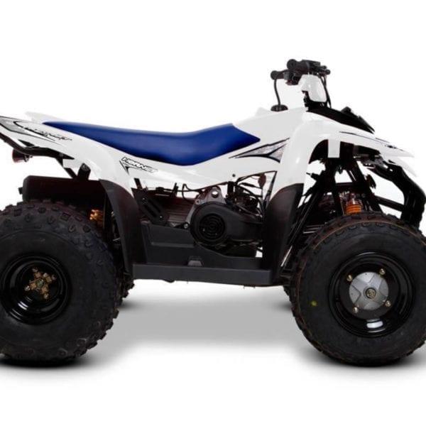 SMC Hornet 100 off road quadbike